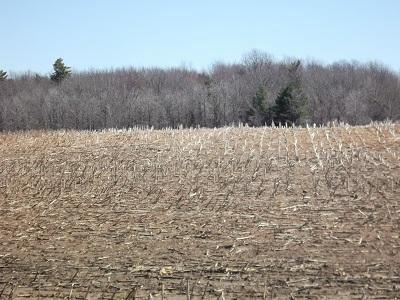 View Vacant Land For Sale at Lt99 Aspen Rd, Reedsville, WI