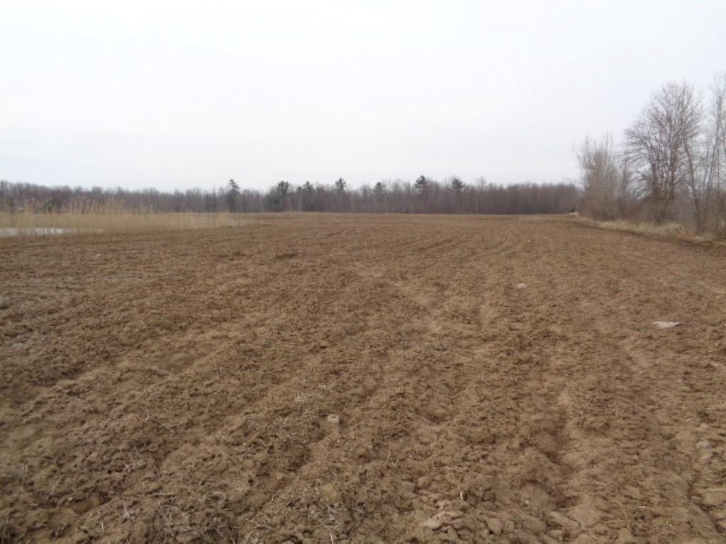 View Vacant Land For Sale at Lt0 S Chase Rd, Pulaski, WI