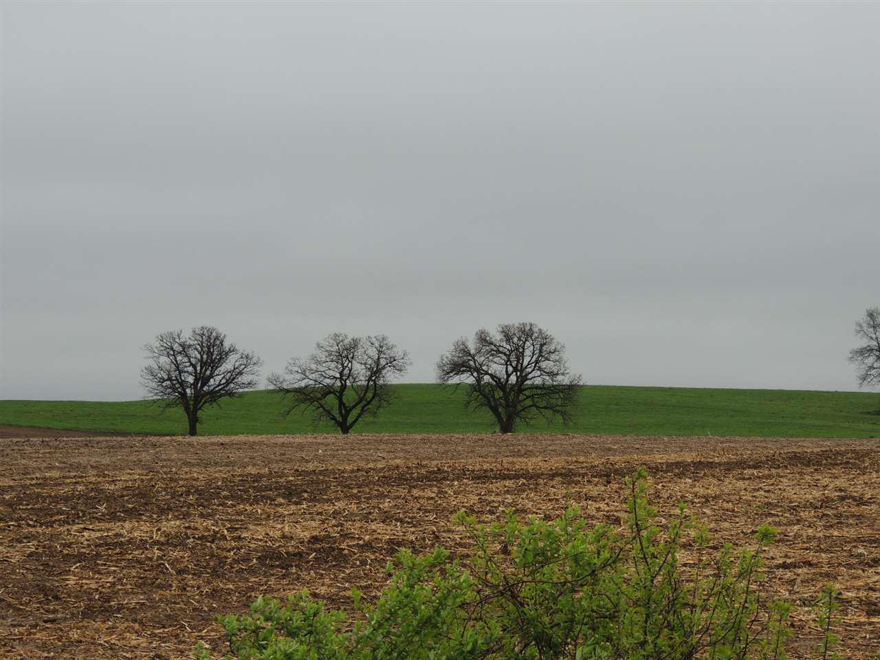 View Vacant Land For Sale at 0 Wittwer Rd, Belleville, WI