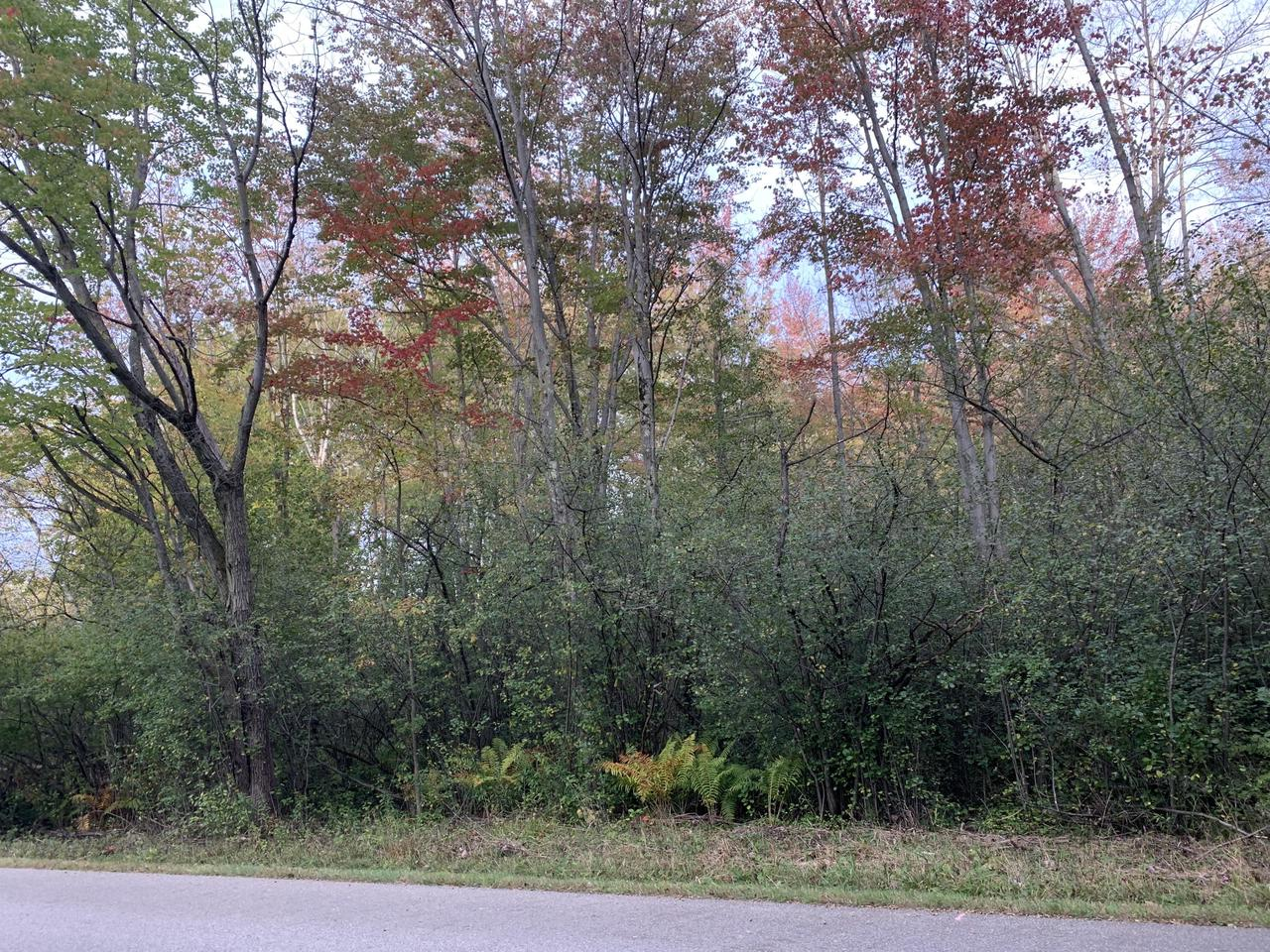 View Vacant Land For Sale at LT0 Green Gable, Marinette, WI