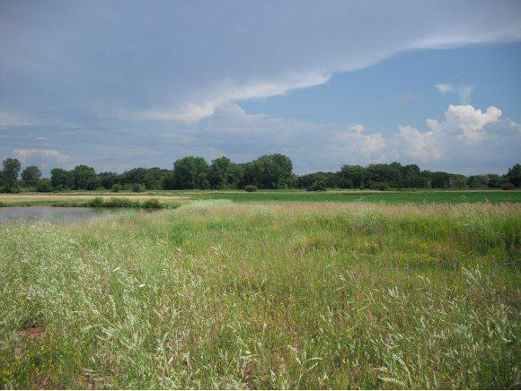 View Vacant Land For Sale at STEARNS DRIVE, Oshkosh, WI