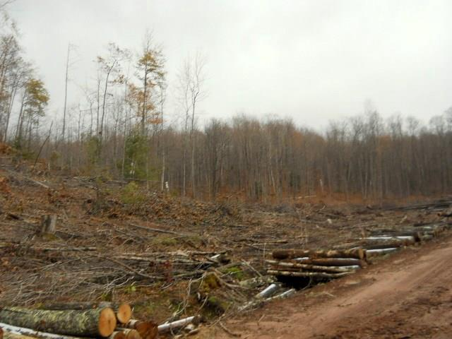 View Vacant Land For Sale at 0 Sanderson Road, Saxon, WI