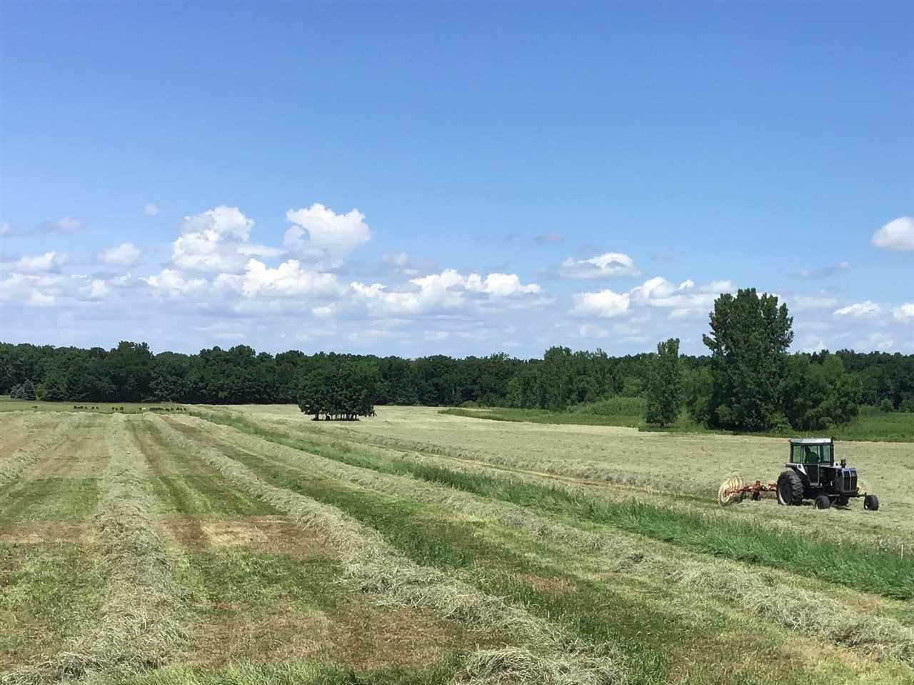 View Vacant Land For Sale at 7668 OAK HILL ROAD, Omro, WI
