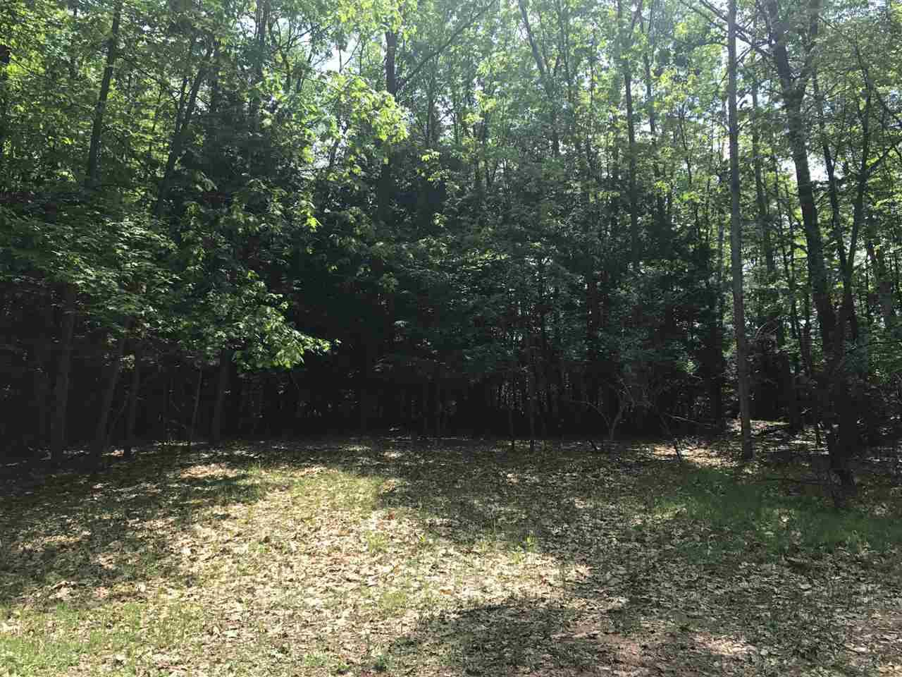 View Vacant Land For Sale at N FAIRLAND LOOP, Menominee, MI