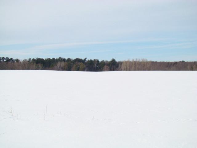 View Vacant Land For Sale at E9657 HWY 96, Fremont, WI