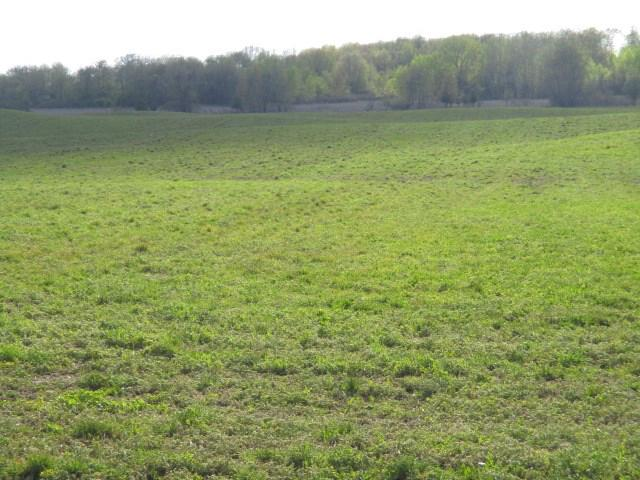 View Vacant Land For Sale at LINER ROAD, Brandon, WI