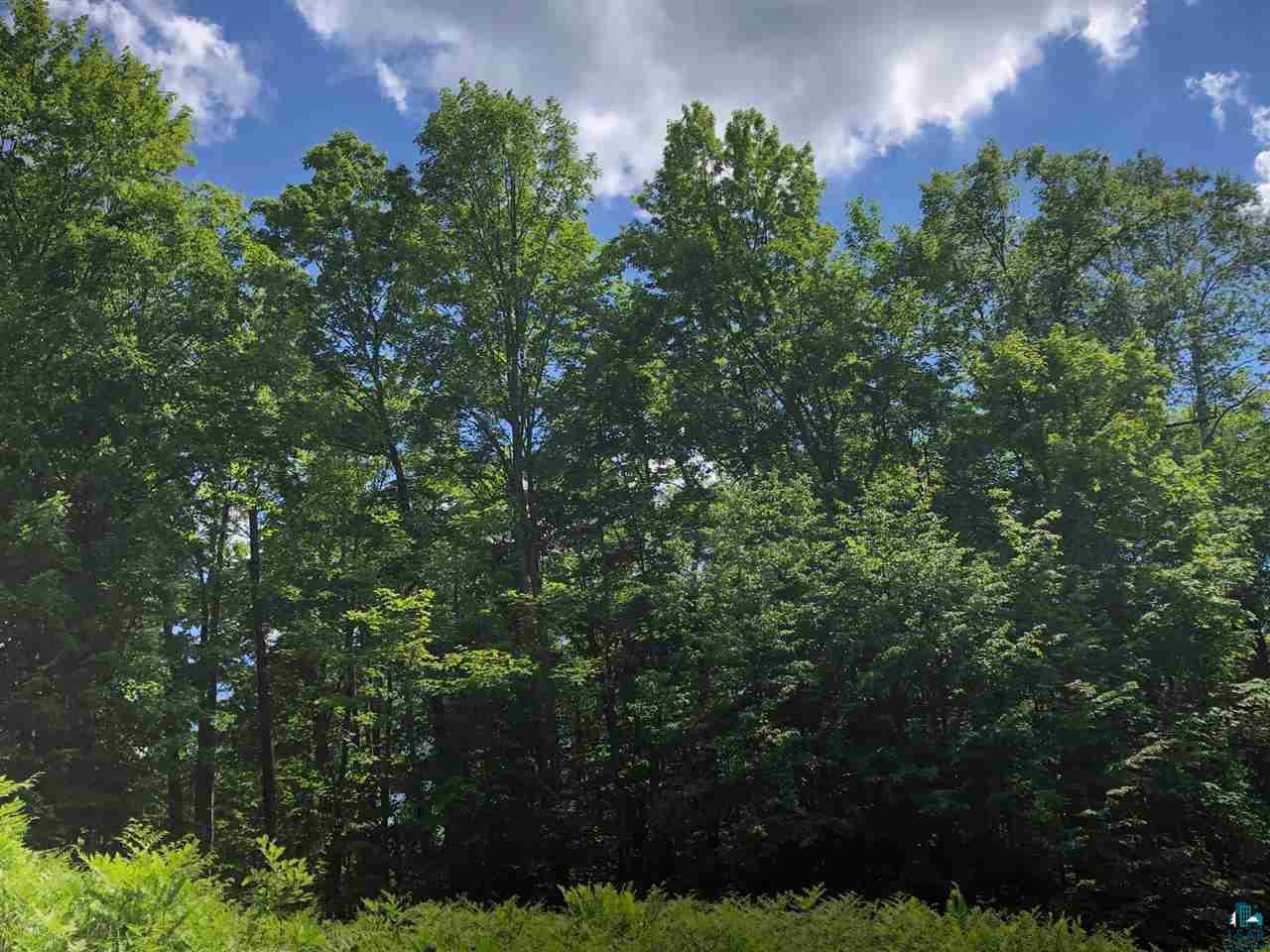 View Vacant Land For Sale at 14143 N Hwy 169, Gurney, WI