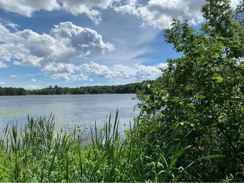 View Vacant Land For Sale at Pcl5 N Shore Dr, Florence, WI
