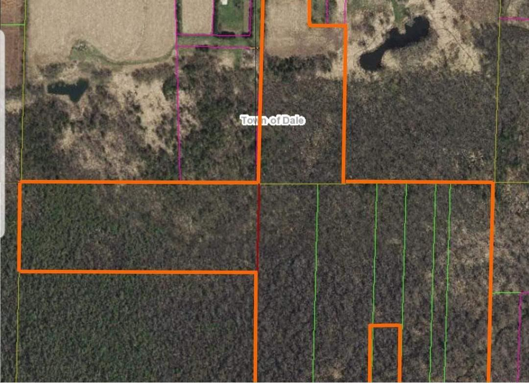 View Vacant Land For Sale at HWY 96, Dale, WI
