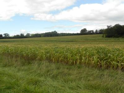View Vacant Land For Sale at 64.83 Ac County Road PP, Ripon, WI