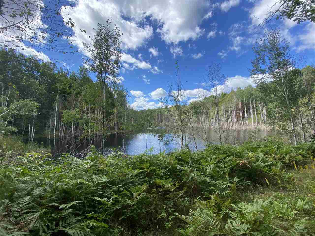 View Vacant Land For Sale at N13500 HARPER ROAD, Athelstane, WI