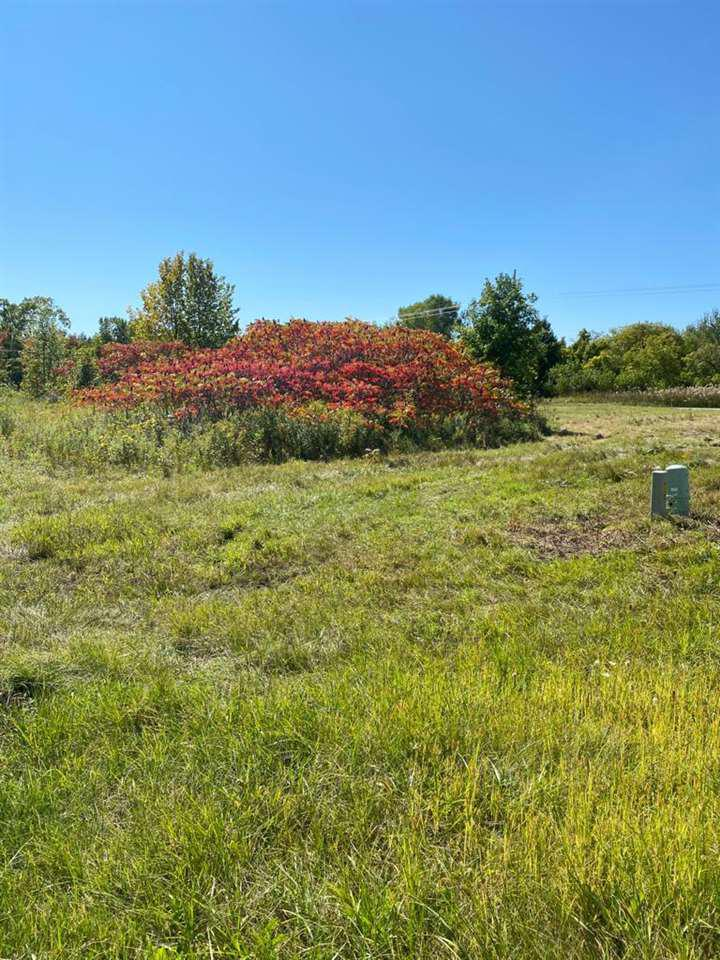 View Vacant Land For Sale at 6086 HWY S, Sobieski, WI