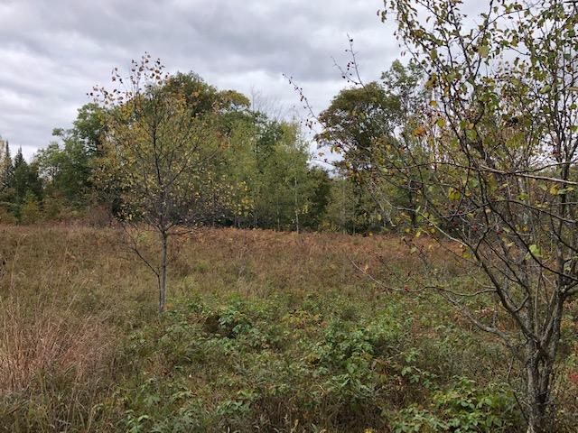 View Vacant Land For Sale at LOT3 Tower Rd, Athelstane, WI