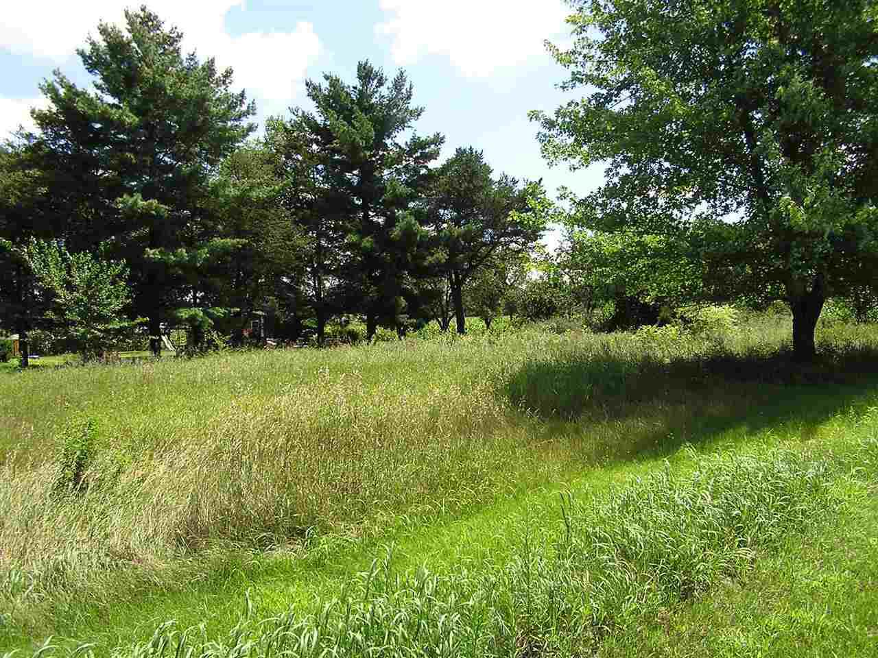 View Vacant Land For Sale at L1 Waushara St, Berlin, WI
