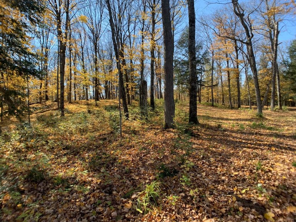 View Vacant Land For Sale at Lot 3 CTH FF, Mercer, WI