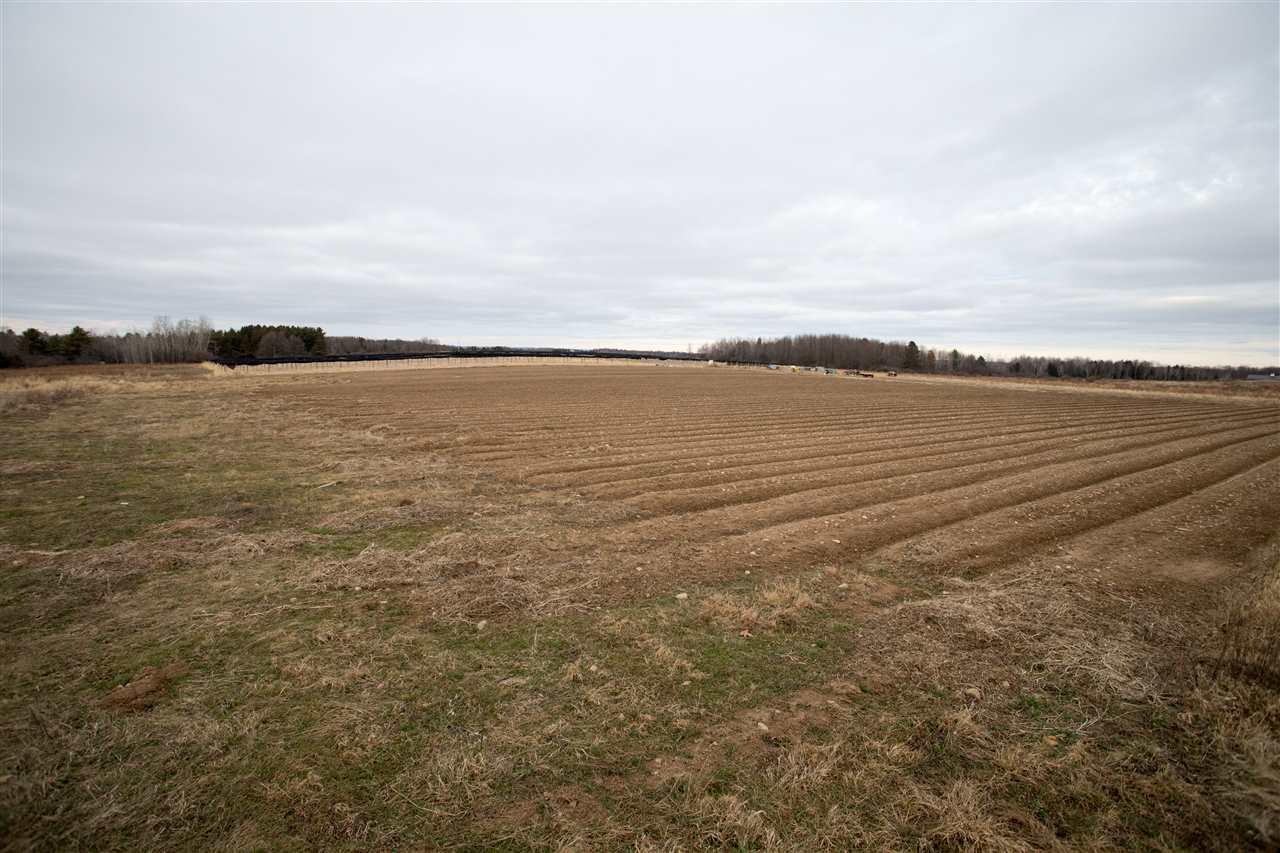 View Vacant Land For Sale at 29.22 acres COUNTY ROAD Z, Merrill, WI