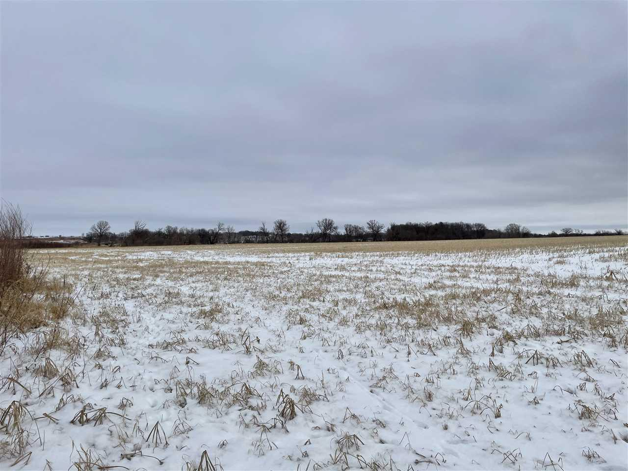 View Vacant Land For Sale at 39.03 acres Grams Rd, Ripon, WI