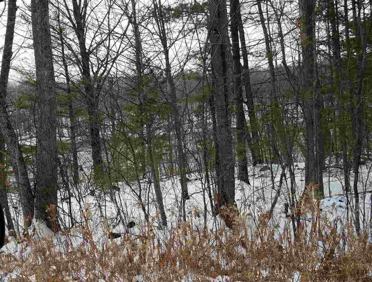 View Vacant Land For Sale at Lot 22 RIVERS EDGE ESTATES, Tomahawk, WI