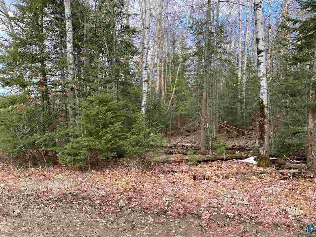 View Vacant Land For Sale at 6710 S County Rd F, Lake Nebagamon, WI