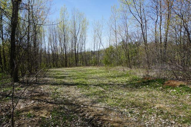 View Vacant Land For Sale at Lots 5 & 6 E Pleasant Avenue, Ellsworth, WI