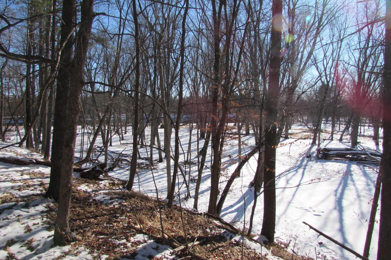 View Vacant Land For Sale at Lt 13 Island Bluff Ln, Pembine, WI