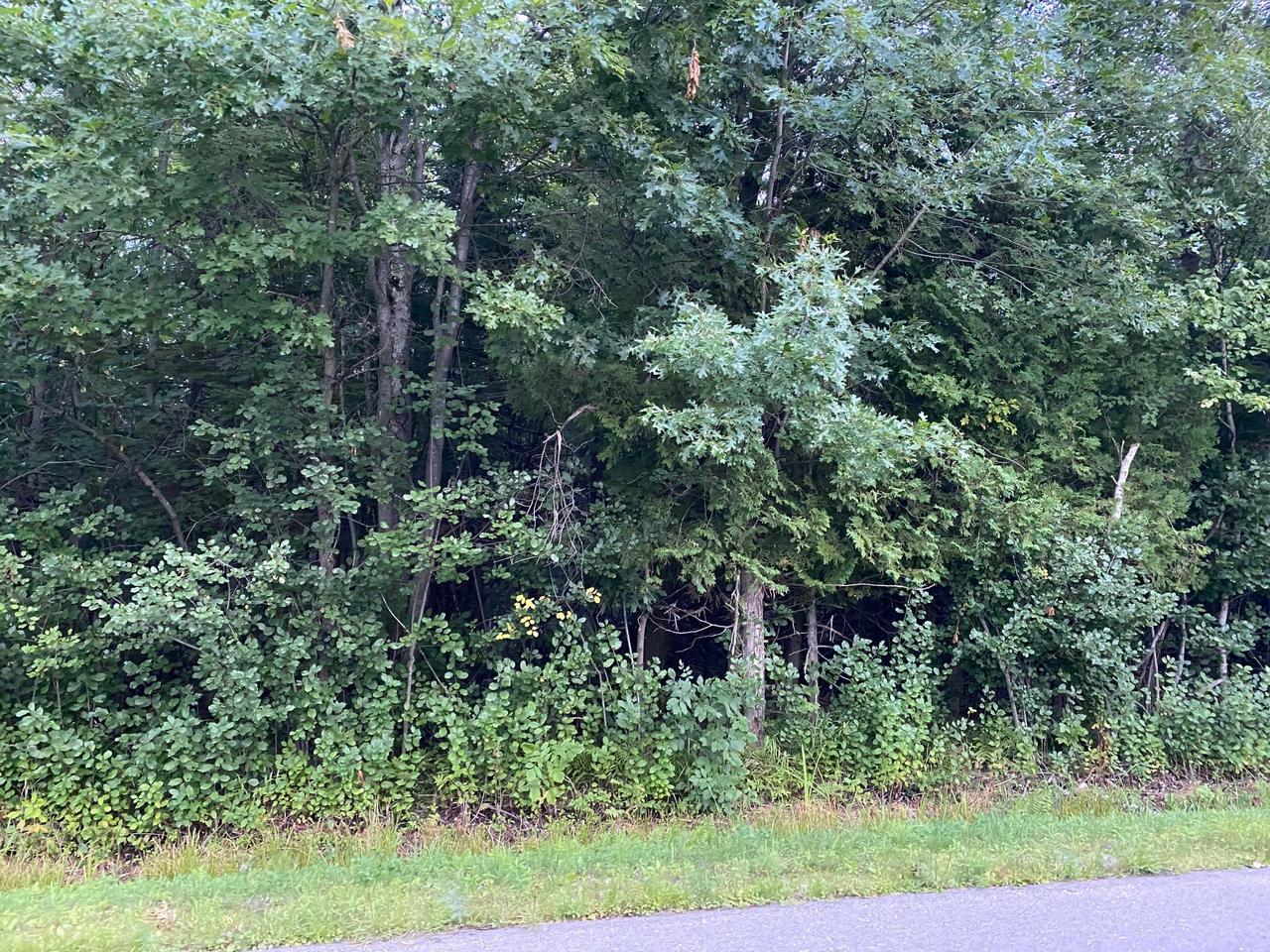 View Vacant Land For Sale at Lt 0 Krause Rd, Marinette, WI