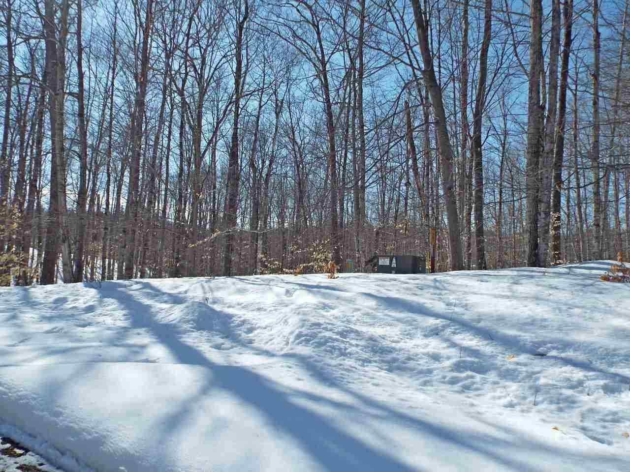 View Vacant Land For Sale at N12655 HEMLOCK SHORES COURT, Athelstane, WI