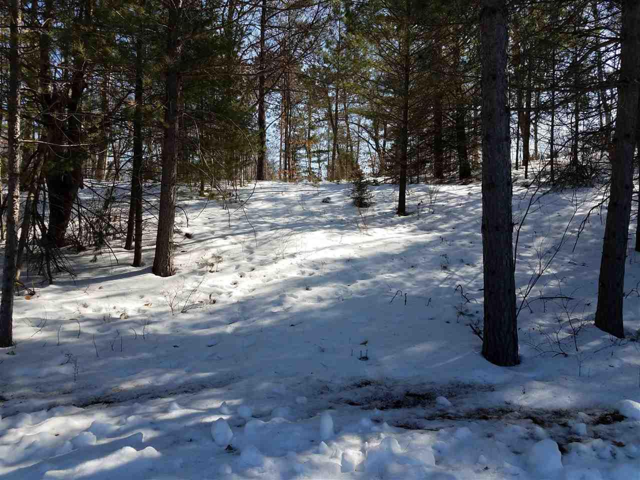 View Vacant Land For Sale at PCLD CSM 1190 ROLLING RIDGE ROAD, Tomahawk, WI