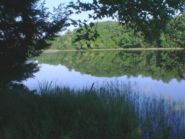 View Vacant Land For Sale at Lt1 N Kelly Lake Rd, Suring, WI