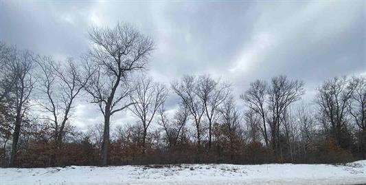 View Vacant Land For Sale at Lt0 Cty Hwy P, Crivitz, WI