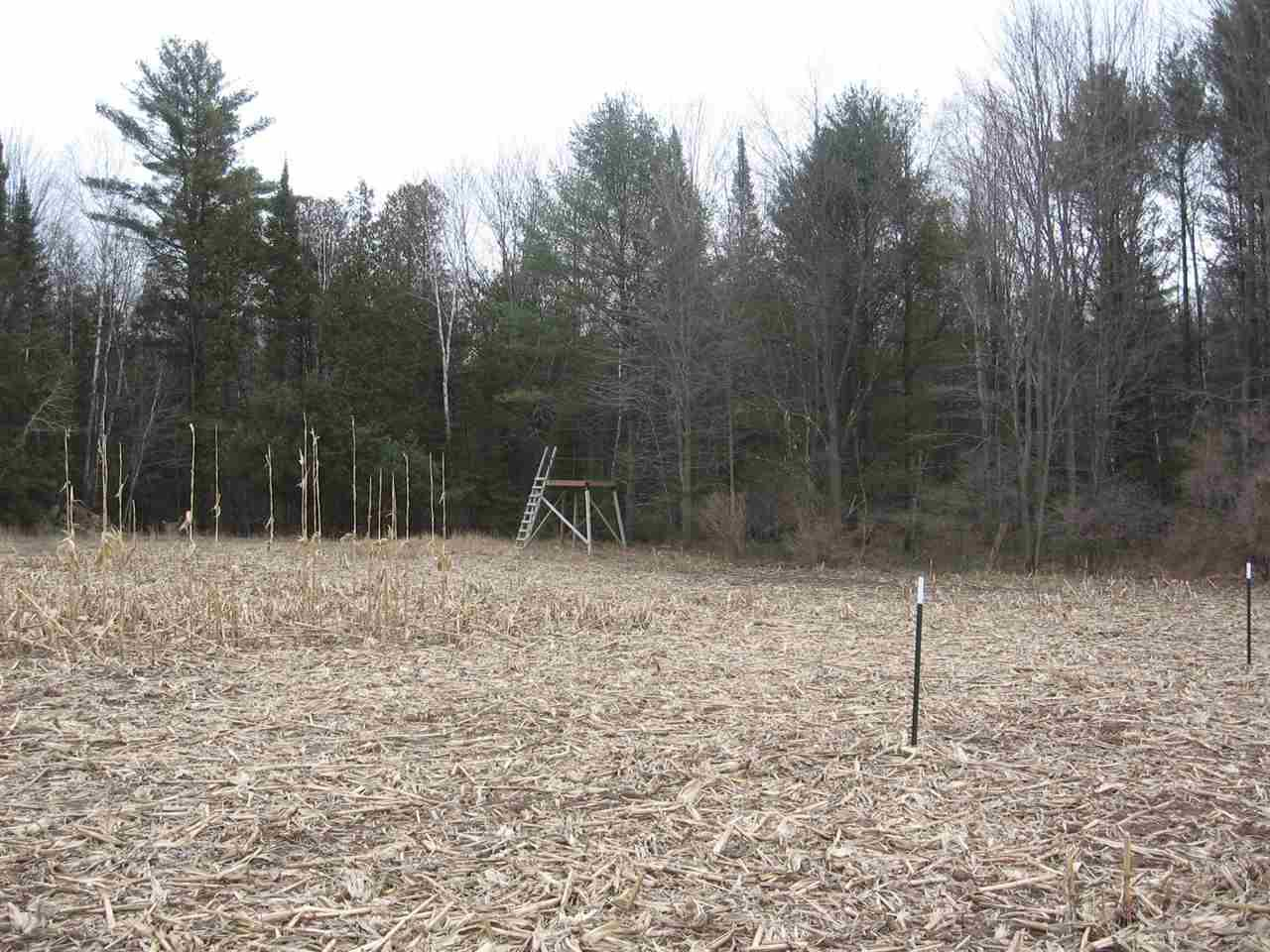 View Vacant Land For Sale at RED BANKS ROAD, Suring, WI