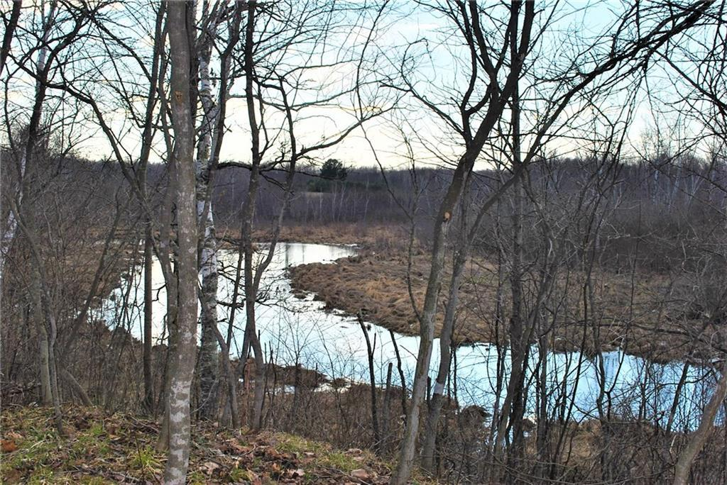 7.3 Acres on 182nd St Street STREET, HOLCOMBE, WI 54745