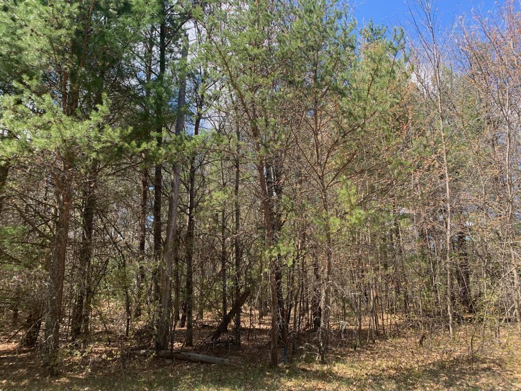 Great spot to build your house on the outer edge of the village. High Speed Fiber Optic Internet available . Nice wooded lot with Water & Sewer already in at the street.