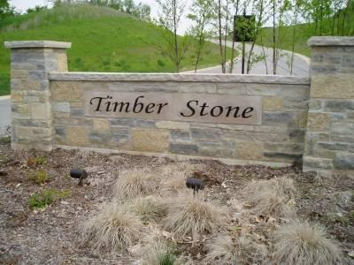 LT85 TIMBER STONE SUBDIVISION, RICHFIELD, WI 53033