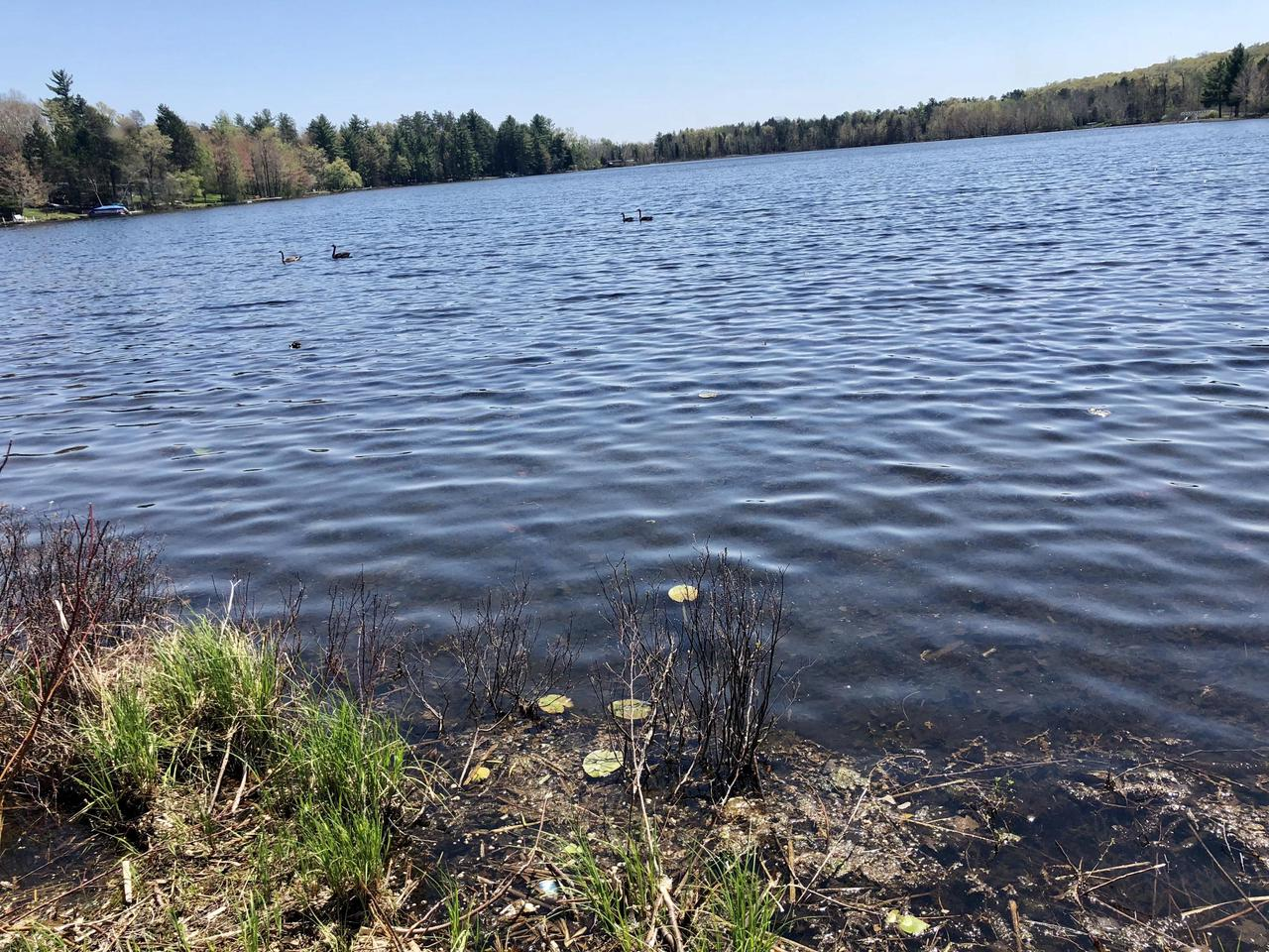 Left Foot Lake - 125' of frontage of full recreation . Come enjoy water sports and fishing on this popular Crivitz area lake. These lots are getting hard to find make this one yours! Natural gas and electric at the road. Priced far below fair market!!