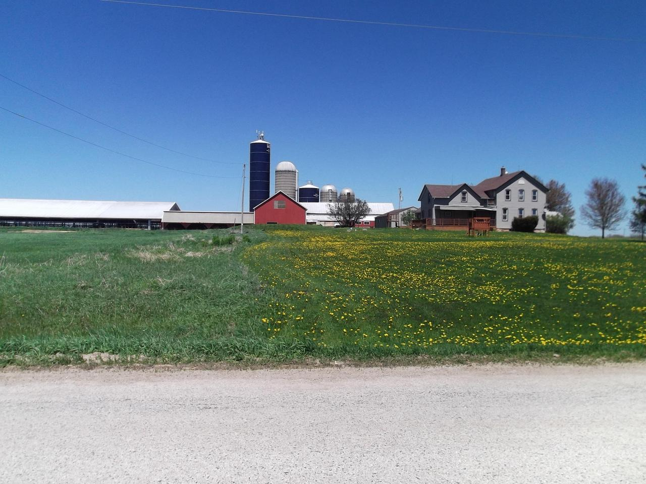 Large home with dairy operation included, just outside the village of Reedsville.Home features an inviting front porch,eat in country kitchen, formal dining room, living room, main floor laundry, 4 + bedrooms and attached 3 car garage.Farm includes 85 +/- acres, double 8 herring bone milking parlor, 5000 gallon milk tank, sand bedded free stall barn, 5 silos with unloaders, machine and storage sheds, a half million gallon storage lagoon and much more.  Farm has heifer raising facility and ability to house dry cows.                       Check with listing agent for purchasing options as farm could be sold without the house.  ''More pictures to follow''Included in sale are 3 partial tax parcels  011034013001.00/011034014000.00/011034015001.