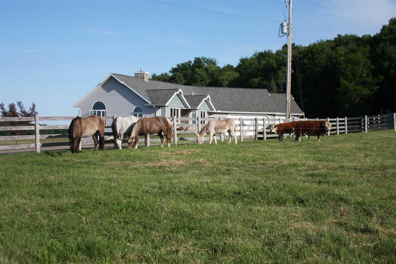 """A pristine 160 acres with a perfect mix of pasture/tillable/woodlots. Fresh air, open spaces, and seclusion, yet close to town. Beautiful 4 bedroom ranch with all the high end accents of modern day living yet with a bit of western motifs. High speed fiber optic internet for the home office with its own private entrance. Outstanding business opportunity exists, whether for Grass raised beef, bison, horses or others. High reinforced perimeter fencing, multiple pristine pastures set up for pasture rotation, heated water tanks, & out building, Barn, & tillable crop land. Once operated as a high sustaining ranch, and retail store. Crop rental pays taxes. Minutes from Wisconsin Dells / Reedsburg and interstate. Approx. 6.6 acres commercial. SEE DRONE VIDEO under """"Virtual Tour Link"""" ABOVE"""