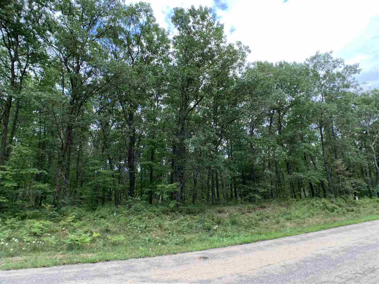 Nicely wooded .5 acre building site for your dream home or up north get-a-way!  A short drive to Shawano Lake and other fishing and recreational lakes.