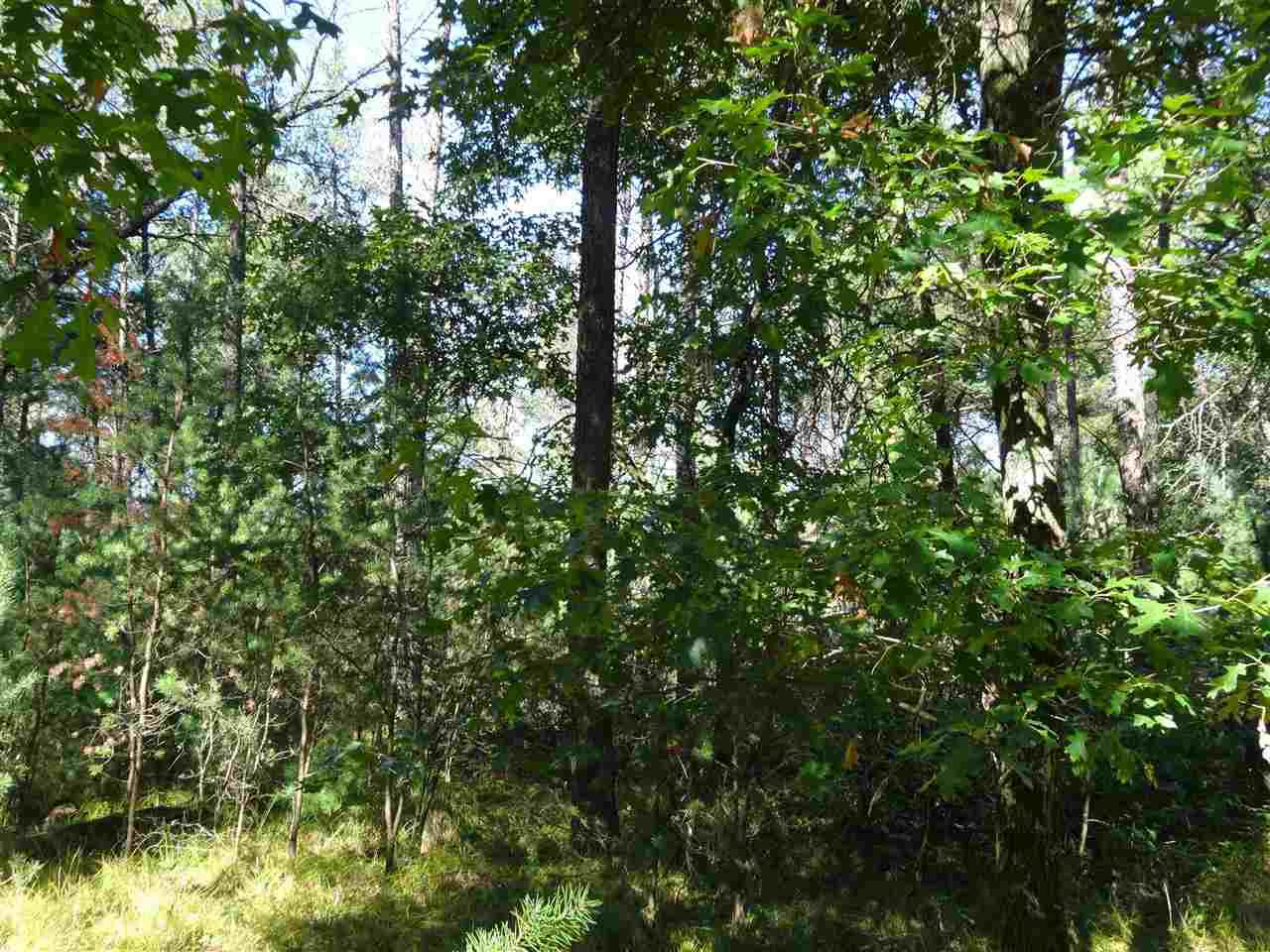 Lot in Castle Rock Estate subdivision w/ private swimming pond, sandy beach, picnic area & only 2 miles away from beautiful Castle Rock Lake. Heavily wooded. Make an offer and build your dream home or vacation get away. Natural Gas line at road.