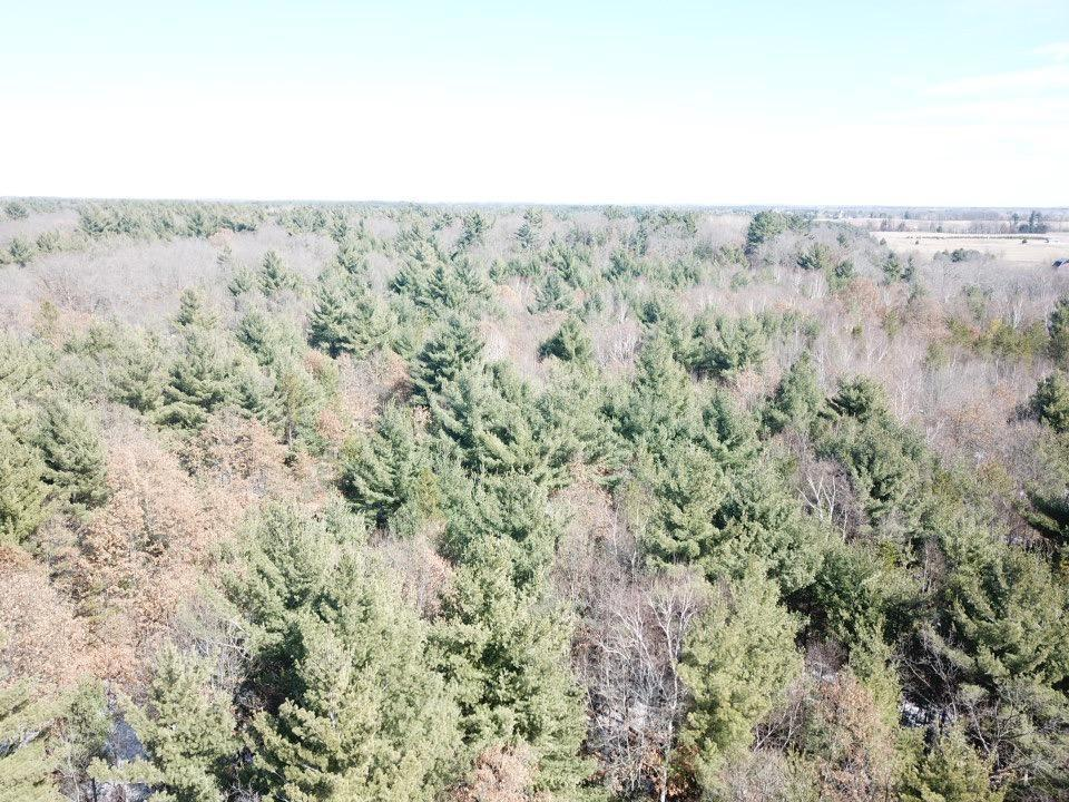 Lot is located in the village, yet has that country feel. Ideal place to build on. Quiet neighborhood. Utilities available include city sewer/water, cable, fiber, natural gas. Other lots available.
