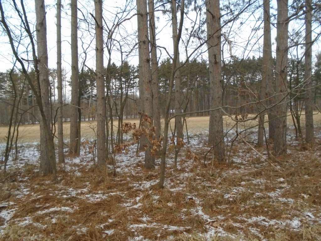 Beautiful buildable lot in Oak Hill Estates! This lot is nearly 1.5 acres in size, perc tests completed, and is located approximately five minutes from Mauston in a nice rural development.  Bring your building plans; these wooded lots may not last long!
