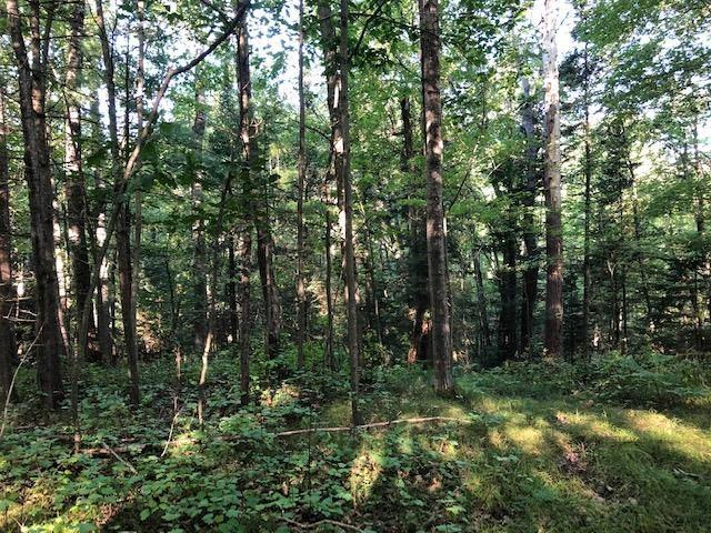 This little wooded piece (.54 acres) of the Northwoods is located within walking to the Pembine Town Park/Lindquist Lake Beach. Great spot to build your home or cottage.